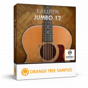 Evolution Jumbo 12 sample library for Kontakt