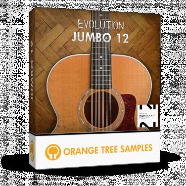 Evolution Jumbo 12 :: Orange Tree Samples